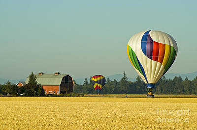 Poster featuring the photograph Willamette Valley Ballooning by Nick  Boren
