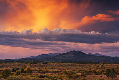 Willow Flats Sunset Poster by Mark Kiver
