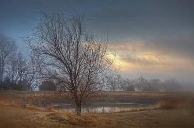 Willow Sunrise Poster by Mark Alder