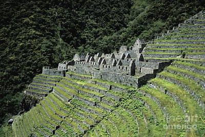 Winay Wayna Inca Trail Peru Poster