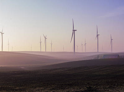 Wind Farm At Dawn Poster