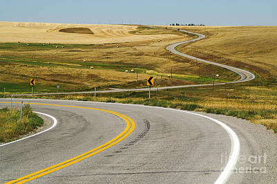 Poster featuring the photograph Winding Road by Sue Smith