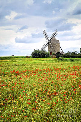 Windmill And Poppy Field In Brittany Poster by Elena Elisseeva