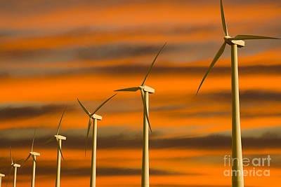 Windmill Farm Poster