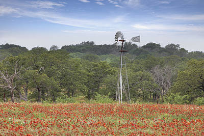 Windmill In A Field Of Texas Wildflowers Poster