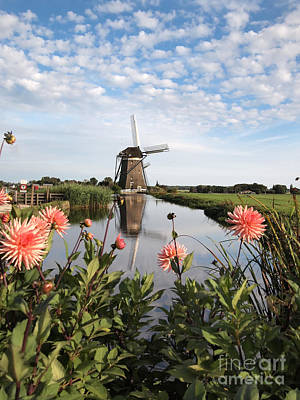 Windmill Landscape In Holland Poster
