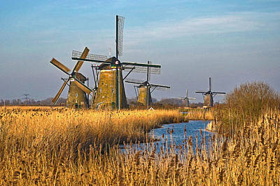 Poster featuring the photograph Windmills And Reeds Near Kinderdijk by Frans Blok
