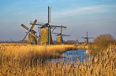 Windmills And Reeds Near Kinderdijk Poster