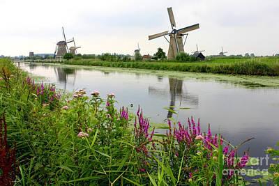 Windmills Of Kinderdijk With Wildflowers Poster