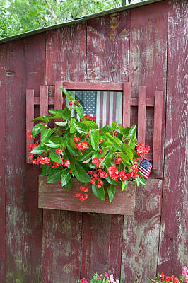 Window Box Planter With Red Dragon Wing Poster by Richard and Susan Day