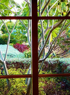 Poster featuring the photograph Window Garden by Amar Sheow
