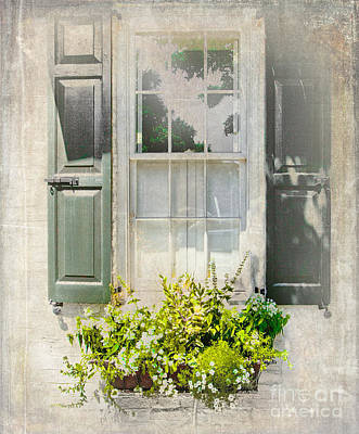 Window With Planter Poster by Dan Carmichael