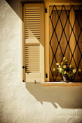 Window With Vase And Petunias Poster