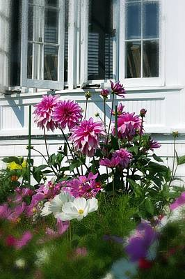 Poster featuring the photograph Windows And Flowers by Randy Pollard