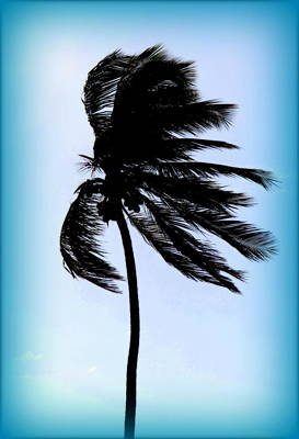 Winds Of Blue Poster by Karen Wiles
