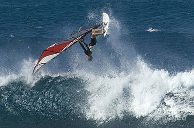 Windsurfer Hanging In Poster by Bob Christopher