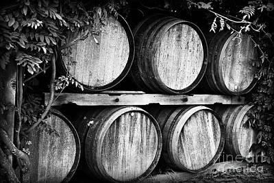 Wine Barrels Poster by Scott Pellegrin