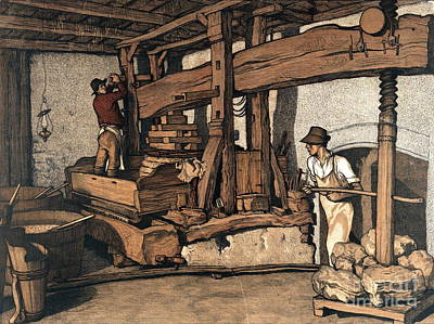 Wine Press 1890 Poster by Padre Art
