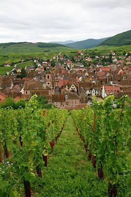 Wine Region, France Poster