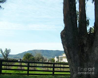 Poster featuring the photograph Winery by Bobbee Rickard