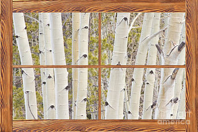 Winter Aspen Tree Forest Barn Wood Picture Window Frame View Poster
