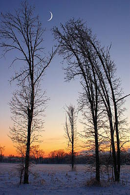 Poster featuring the photograph Winter At Dusk by Randy Pollard