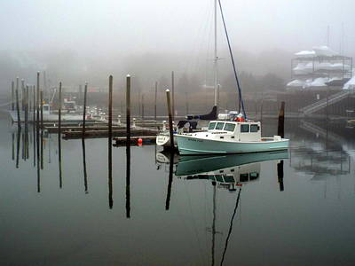 Winter At Sesuit Harbor Poster by Dianne Cowen