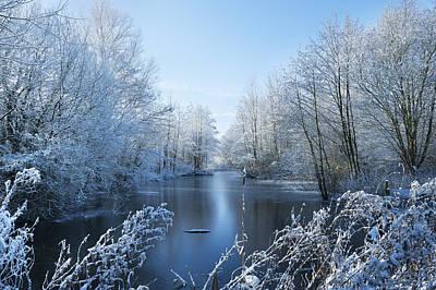 Winter Beauty Poster by Svetlana Sewell