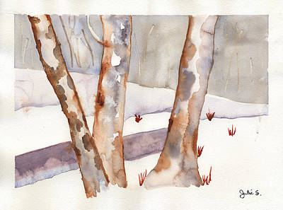 Winter Birch Poster
