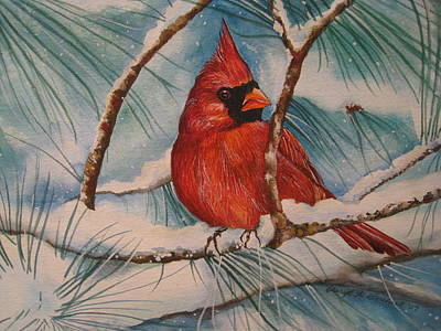 Winter Cardinal Poster by Cheryl Borchert