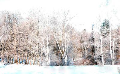 Winter Colors Poster by Marcia Lee Jones