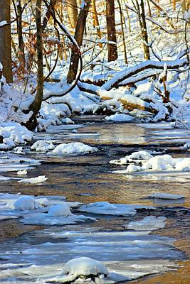 Poster featuring the photograph Winter Creek by Candice Trimble