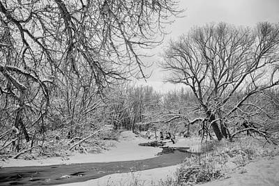 Winter Creek In Black And White Poster