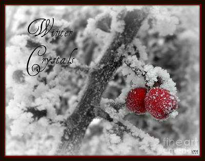 Poster featuring the photograph Winter Crystals On Red by Heidi Manly