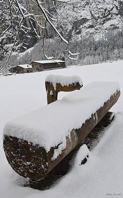 Winter Design Poster
