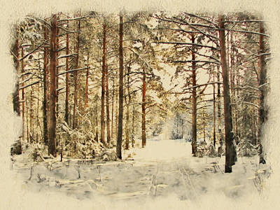Winter Forest Landscape 39 Poster by Yury Malkov