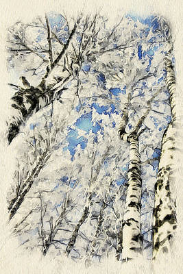 Winter Forest Landscape 41 Poster by Yury Malkov