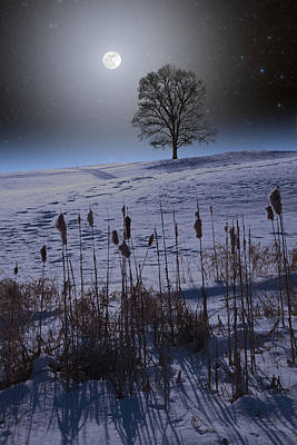 Poster featuring the photograph Winter Glow by Larry Landolfi