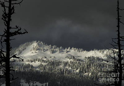 Winter In North Cascades Poster by Yulia Kazansky