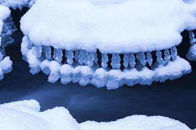 Winter Jewelry Poster by Mircea Costina Photography
