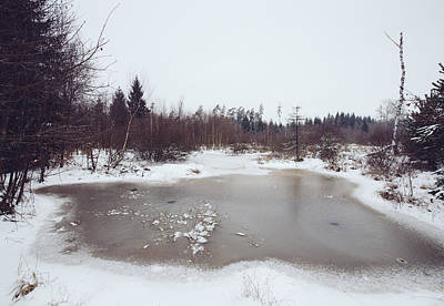 Winter Landscape With Trees And Frozen Pond Poster