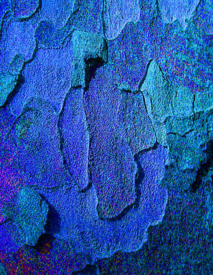 Winter London Plane Tree Abstract 4 Poster