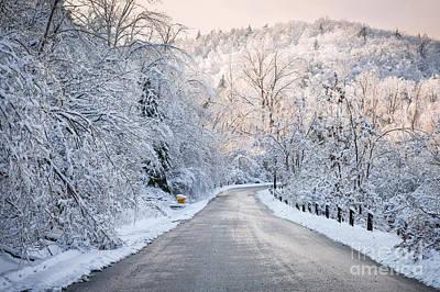 Winter Magic Poster by Elena Elisseeva