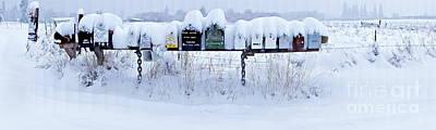 Winter Mailbox Panorama Poster