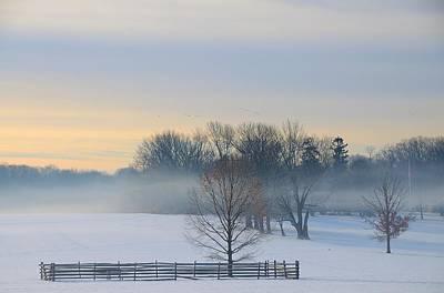 Winter Morning Fog Poster by Steven Richman