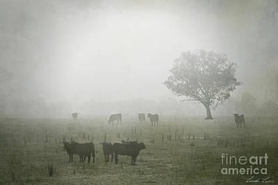 Winter Morning Londrigan 5 Poster by Linda Lees