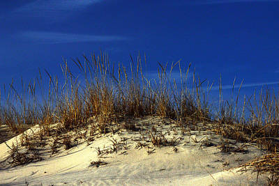 Poster featuring the photograph Winter Morning On The Dunes by Bill Swartwout