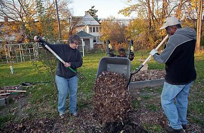 Winter Mulching In A Community Garden Poster by Jim West