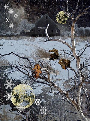 Winter Nights Poster by Donna Lee Young