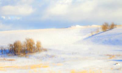 Winter Poplars Poster
